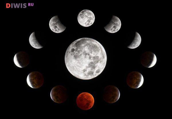 Растущая Луна начнет увеличиваться в марте 2019 г