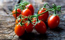 Когда можно сажать помидоры на рассаду в 2019 году