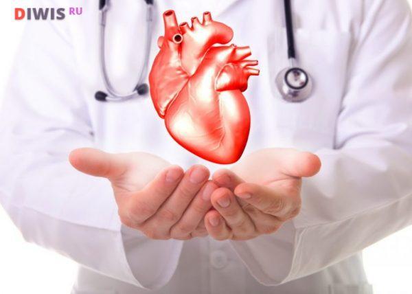 Все что важно знать о мерцательной аритмии сердца