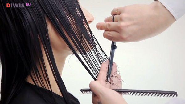 Благоприятный день для стрижки волос в июне 2019 года