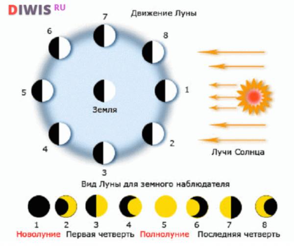 Фазы Луны в июле 2019 года