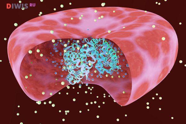 Норма гемоглобина в крови у женщин по возрасту