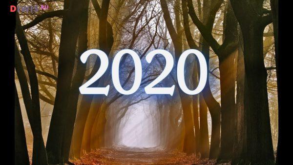 Прогноз Оракула на 2020 год по знакам зодиака