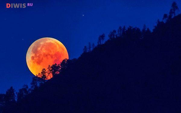 Солнечные и лунные затмения в 2020 году