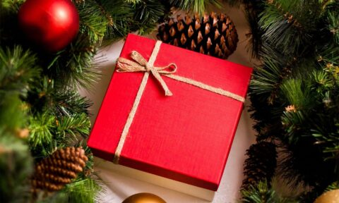 Как выбрать подарок воспитателям на новый год